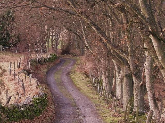 Scotland path Melanie Harrell space clearing
